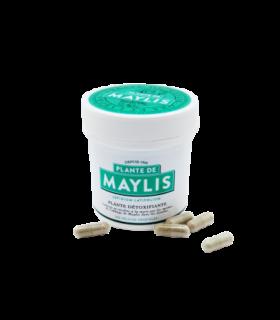 Tisane de Maylis gélules